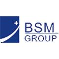 Bluestar Mould Group logo