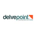 Delvepoint logo