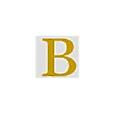 The Bernd Group logo
