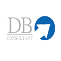 DB Consulting Group logo