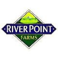 River Point logo