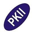 Philkoei International logo
