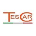 TES CAR logo