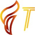 Ftechiz Solutions logo