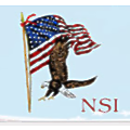 National Security Institute logo