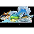 Virginia Beach Fishing Center logo
