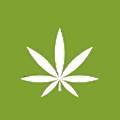 Cannabis Pharma logo