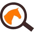 Videquus logo