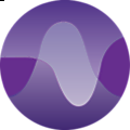 Loud Voice Services logo