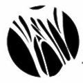 NeoChord logo