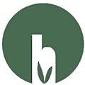 hajoona logo