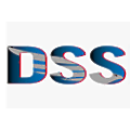 Defense Systems and Solutions logo