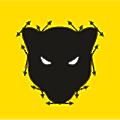 Panther Studio logo
