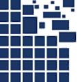 Real Liquidity logo