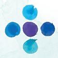 Cerba Research logo