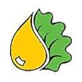Nova Extraction logo