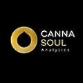 CannaSoul Analytics logo