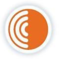 Cerapedics logo
