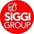 Siggi Group logo