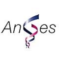 AnGes logo