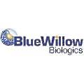 BlueWillow Biologics logo