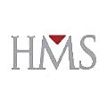 HMS Consulting logo