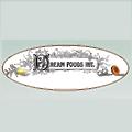 Dream Foods International logo