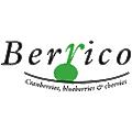 Berrico logo