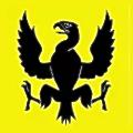 Citius Composite logo