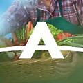 Agromsa logo