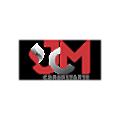 JCM Consultants