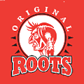 ROOTS for Safety logo