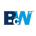 Bluechipworld logo