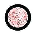 Prentex Alloy Fabricators logo