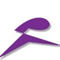 Pragmasys Consulting LLP logo