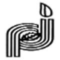 Pj Margo logo