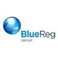BlueReg logo