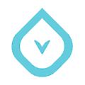VeriSolutions logo