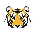 TigerRisk Partners