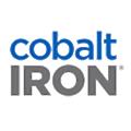 Cobalt Iron logo