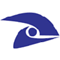 FastVision logo