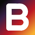 Blackbird logo