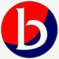 Bridle Insurance logo