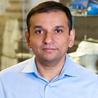 Mausam Bhatt